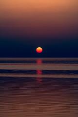 The sunset! (aliffc3) Tags: sunset ummbab qatar nikond750 nikon70200f4 seascape beach tourism travel