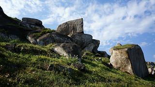 Lomas de Lucumo - Pachacamac