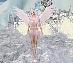 Winter Angel (Asia Ristow | Regeneration) Tags: lelutka second life avatar maitreya angel bento vista wings mix match clothing shoes accessories truth 7 deadly skins tiffany designs blueberry overlow two moon paradise lassitude ennui phedora regeneration 7deadlys{k}ins asiaristow