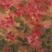 Blossoms, Acrylic, 51x40 cm, $950.00 AUD