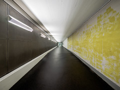 183/365: Tunnel (haslo) Tags: yellow perspective tunnel olympus omd em1 moiree project365 115in2015