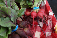 Radishes (or beets?) (Let Ideas Compete) Tags: colorado vegetable co beet radish beetroot crestedbutte beetroots taprrot taprrots