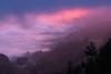 Mystische Nebelstimmung (artjsta) Tags: nebel mystische nebelstimmung feuer im himmel wald landschaft