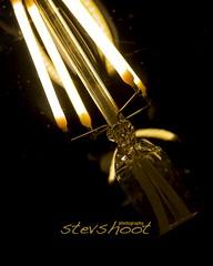 Ampouled lueur... Un  ange au ciel... (Stevshoot) Tags: manuelmap pentaxart led lowvoltage memory 28 stevshoot aperture éclairage light lumières autofocus pentax 1750 tamron k30 stevlevent ampoule edison
