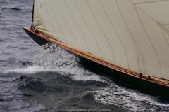 Les charmes de la voile (Philippe Stanus photographies) Tags: sainttropez sea sailing sail sailingemotion var stanus philippestanus lesvoilesdesainttropez voilesdesainttropez lesvoilesdesainttropez2016 voile voilier régate régates canon canoneos7d
