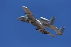"""Fairchild Republic A-10C Thunderbolt II of the Michigan ANG's 107 FS """"Red Devils"""" from Selfridge ANG Base (Norman Graf) Tags: red devils 107fs 107thfightersquadron 127wg 127thwing 800222 a10 a10c ang airnationalguard aircraft airplane cas closeairsupport davismonthanafb fairchildrepublic hawgsmoke2016 jet mi miang michiganairnationalguard militaryexercise plane selfridgeairnationalguardbase thunderboltii usaf unitedstatesairforce warthog reddevils"""