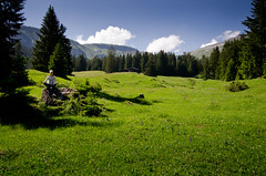 Green smile (Max Hoff) Tags: meadow wideangle summer switzerland sunny green nikon d7000