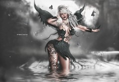 Butterfly Confused♥♥ (Nayra Collas) Tags: secondlife tattoos nayracollas aisha games fantasy butterfly roleplay