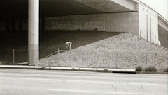Graffiti under the Hollywood Freeway 1979 (Meredith Jacobson Marciano) Tags: freeway hollywood graffiti sidvicious sexpistols 1970s punk overpass