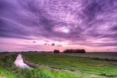 Who's afraid of Pink and Purple Skies? (Alex-de-Haas) Tags: dutch dutchskies hdr holland hollandseluchten marken nederland nederlands netherlands noordholland beautiful daglicht daylight ditch highdynamicrange landscape landschap lucht mooi schiereiland sky sloot summer water zomer