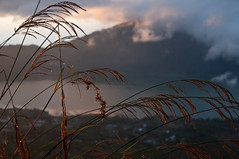 _DSC0979 (vbratone) Tags: mount batur sunrise trek bali island indonesia nature light volcano
