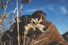(susahneadlerberg) Tags: dog malamute outside blue sky intothewild friends nature