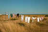 DUNGENESS BEACH..... PERSIL WHITE ! ! ! Lol (Wrenw17) Tags: beach dungeness washingline washing leggings tops towels