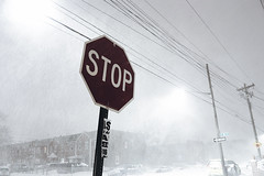 Stop and enjoy the snow (VIProduction) Tags: stop stopsign red white snow brooklyn newyorkcity nyc newyork nycstreets ny walking eye road travel traveling sky unity united inspire inspiring outdoors photography photographer pointofview winter 2017 holiday holidays flickr day amour canon canon6d canonphotos view visual beauty beautiful nature city new storm air 6d wow streetart camera bnw blackandwhite blackwhite