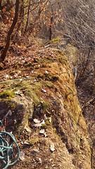 Nuovo progetto (Paolo Moro) Tags: climbing boulder boschi