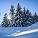 A lovely winterday (epioxi) Tags: epioxi winter snow schnee sonne sun dreamland
