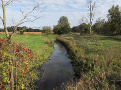 A picture of me enjoying a fine view of Tallahassee Creek in areas of pastureland and farmland in southern Michigan on a partly sunny day in autumn. (Tim Kiser) Tags: 2014 20141005 alganseetownship alganseetownshipbranchcountymichigan alganseetownshipmichigan alganseetownshiplandscape branchcounty branchcountymichigan branchcountylandscape coldwaterriverdrainagebasin coldwaterriverwatershed img7916 lakemichigandrainagebasin lakemichiganwatershed lesterroad michigan michiganlandscape october october2014 saintjosephriverdrainagebasin saintjosephriverwatershed stjosephriverdrainagebasin stjosephriverwatershed tallahasseecreek tallahasseecreeklandscape agriculturallandscape autumnlandscape autumnallandscape creek creekbanks creeklandscape electriclines falllandscape farm farmlandscape farmland farmlandlandscape grass grasses landscape overheadelectriclines overheadpowerlines partlysunny pasture pasturelandscape pastureland powerlines river riverlandscape riverbanks riverinelandscape roadsideplants roadsideweeds smallcreek smallriver smallstream southmichigan southcentralmichigan southernmichigan stream streamlandscape view viewfromabridge weeds wire wirefence quincy unitedstates