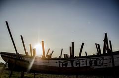 _DSC3631 (Javiera Dolores) Tags: contraluz mar barcos