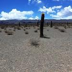 Parque nacional Los Cardones thumbnail