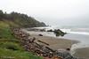 Cape Blanco (stanhellmann) Tags: ocean oregon storm driftwood