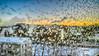 5.1.2017 Torstaiaamu Thursdaymorning Turku Åbo Finland (rkp11) Tags: åbo southwestfinland finland 512017 torstai aamu thursday morning turku pakkanen kylmä frost frosty bluesky tammikuu january enero 1月 一月 1월 styczeń janvier januar มกราคม января talvi winter invierno inverno 冬 冬季 겨울 zima hiver ฤดูหนาว kış зима lumia1020 hdr hdrphotorealistic pureview hdrefexpro2 dawn aamunkoi aamunkajo auringonnousu sunrise aurajoki auraå riveraura aurariver fiume joki stream bourn 川 강 rzeka rivière แม่น้ำ река riverbank reflections multavierunkatu jääkiteet icecrystals jääkukat iceflowers