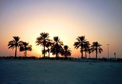 Sunset, Al Mamzar, Dubai / Закат, Аль Мамзар, Дубаи (Irina.yaNeya) Tags: dubai uae emirates sunset almamzar palms trees sand light sun sol puestadelsol dubái eau palmas رمل صحراء desert desierto arena luz غروبالشمس غروب الشمس الممزر دبي الامارات palmeras أشجارالنخيل أشجار ضوء sky cielo سماء дубаи оаэ эмираты закат альмамзар пальмы песок деревья свет солнце небо пустыня coast costa берег