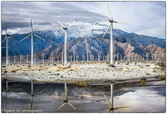 Wind Turbines in Palm Springs (booster90017) Tags: ngo ngc ngg