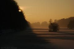 Winter (Natali Antonovich) Tags: winter tervuren belgium belgie belgique snow frost nature christmas christmasholidays landscape park sun shadows atmosphere mystery
