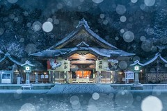 The snowing day of a shrine (ILCE-7M2 + SEL55F18Z) (tadanori.inoue) Tags: shrine snow snowing cold new year landscape japan culture sony ilce7m2 carlzeiss zeiss sel55f18z night wind niigata strobe