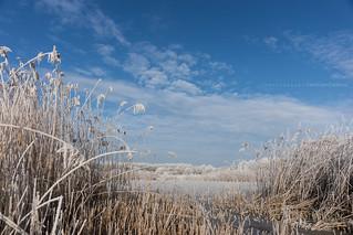 Winterrrr...