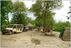 DSC08764PJ_resultat (http://phj.bookfoto.com/) Tags: okavango botswana afrique philippe jubeau moremi