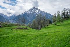 Naters 9 (jfobranco) Tags: alps switzerland suisse wallis brig valais naters