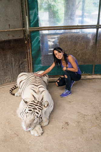 Sandra and the white tiger