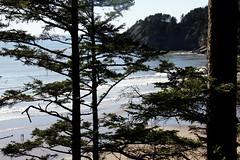 2014-04-13-Pic51-ShortSandsBeach (junglekid_jared) Tags: thebeach 2014 shortsandsbeach ©joejohnson