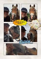 Samen (gill4kleuren - 12 ml views) Tags: horse sarah fun saar paard haflinger