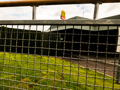 McFence #HFF (Bobby McKay. trying to get back up and out) Tags: mcdonalds fencefriday 365201415project