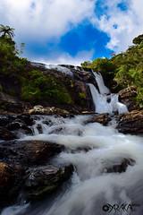 Baker's Falls (daraka_s) Tags: nature falls sri lanka horton plains bakers waterfalls