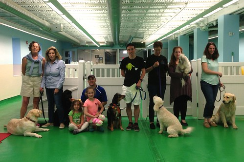 """Obedience 3, Session A, Spring 2015-Wed; Class photo-01 • <a style=""""font-size:0.8em;"""" href=""""http://www.flickr.com/photos/65918608@N08/19455874046/"""" target=""""_blank"""">View on Flickr</a>"""