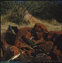 Namibia CXXXIII (__Daniele__) Tags: africa park 120 6x6 film fuji plateau slide hasselblad velvia afrika medium format analogue 50 namibia e6 rvp waterberg 500cm