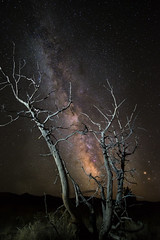 The burning bush (.Bala) Tags: milkyway nightsky paintedhills oregon johnday