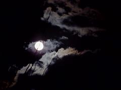 full moon Wednesday night, January 11 (EllenJo) Tags: fullmoon january11 2017 ellenjo pentaxqs1 50mmlens pentaxqwithpentaxklens digitalcameraandanaloglens ellenjoroberts moon