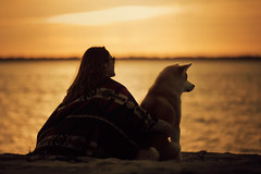 21/365 (Luis Valadares) Tags: akita dog light portugal photography people pretty portrait project pose amazing river sunset