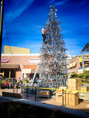 'Tis the Season (Stefan Schafer) Tags: christmas tree season metal blue sky boxes man worker artist shopping carts erecting building constructing