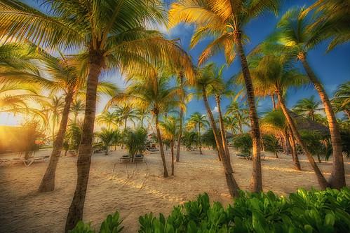 Beach RIU Palace Aruba