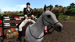 Horse Riding, 乘馬 (Van Gackt) Tags: horse riding 乘馬 vangackt secondlife yegrina tomatopark lastride