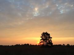 IMG_6142 (marcoderksen) Tags: mtb atb mountainbike veluwe gelderland