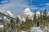 Grand Teton Trees (kevin-palmer) Tags: grandtetonnationalpark national park wyoming winter snow snowy cold december nikond750 snowshoeing blue sky sunny sunshine grandteton clouds tetonmountains tamron2470mmf28