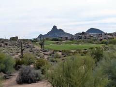 Troon North Pinnacle #10 from tee 401 (tewiespix) Tags: troonnorth golfcourse golf pinnacle phoenix scottsdale arizona