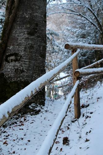 Giessbach Hike