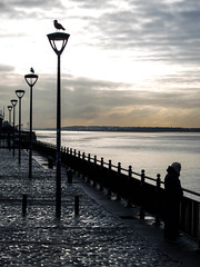 BRYAN_20161123_IMG_0093 (stephenbryan825) Tags: blackwhite liverpool pierhead rivermersey cobbles dusk lamppost loneliness man railings reflection seagulls selects